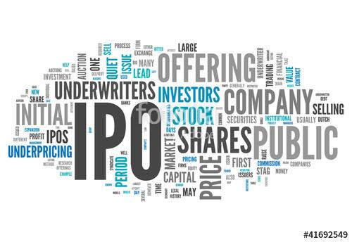 Public Company - Caribbean Value Investor