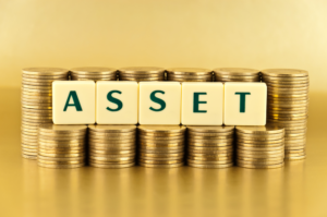 Assets- Caribbean Value Investor