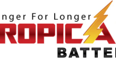 Tropical Battery Limited IPO Overview and Analysis